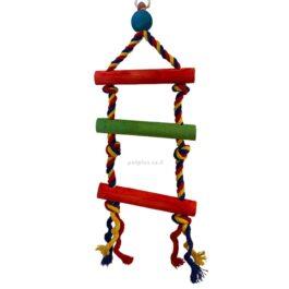 צעצוע-לתוכי-567195