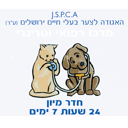 צער בעלי חיים בולדוג ירושלים
