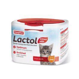 תחליף חלב לחתול