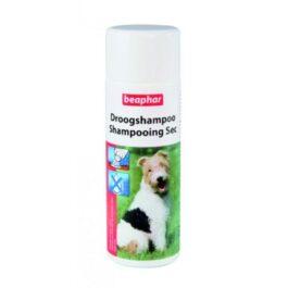 שמפו יבש לכלב