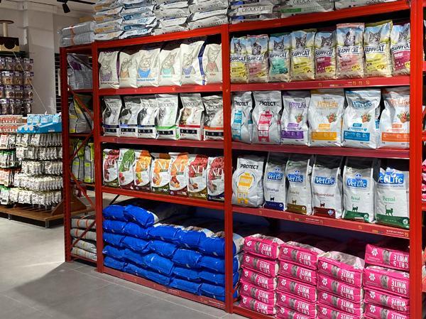 חנות חיות ירושלים חתולים