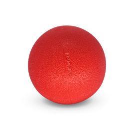 כדור גומי לכלב גדול