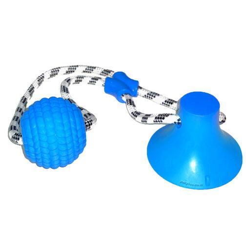 משחק משיכה לכלב כדור על חבל