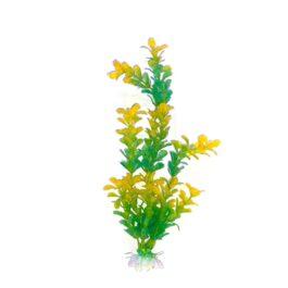 צמח-לאקווריום-צהוב-30-סמ-ירוק