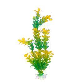 צמח-לאקווריום-צהוב-40-סמ-ירוק