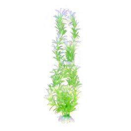 צמח-לאקווריום-30-סמ-ירוק-לבן