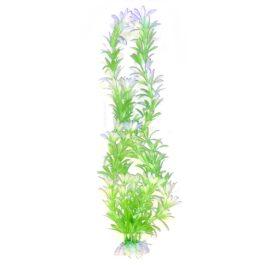צמח-לאקווריום-40-סמ-ירוק-לבן