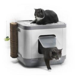 סמארט שירותים משולבים לחתול