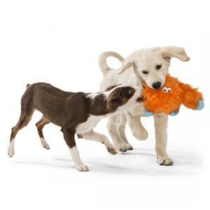 כלבים-משחקים-בובה-ג'פרסון-לכלב